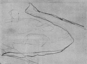 Mondrian A223a Outline Drawing for Polder Landscape with Irrigation Ditch and Two Cows (verso of A306), 1900-02