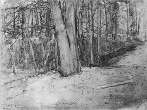Mondrian A89 Birch Trees along a Pathway, 1898-99